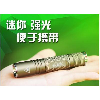 北京凌天 迷你强光手电筒F10 010-51652021