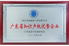 广东省知识产权优秀企业