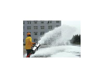 (天本)暴雪7