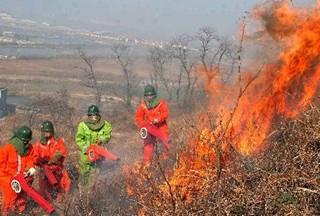 【大数据】森林火灾频发  森林消防装备招标统计