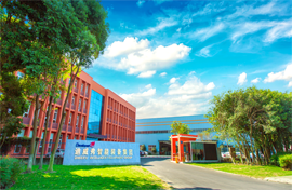 Diweifu Intelligent Equipment Group