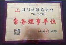 四川省消防协会  常务理事单位